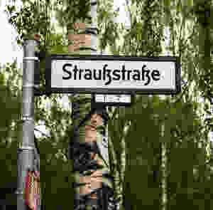 German Street Sign:Straussstrasse