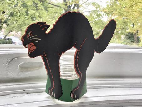 Black Cat (schwarze Katze) Boo!
