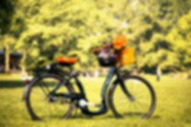 Bike in the park (1024x671)_0.jpg