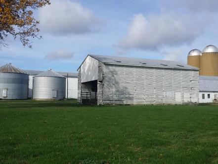 Farm on the sunny day