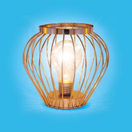 Cage Fairy Light Desk Lamp