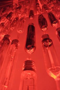 cortina de bombillas (2)