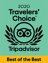 tripadvisor_2020.png