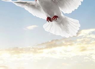 С Днем Великой Победы вас и всех ваших родных и близких!!!