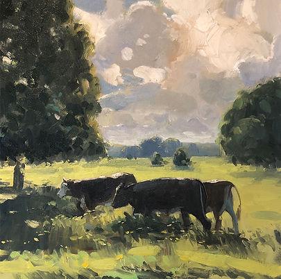 Pasture light, Dominic Parczuk, Artist, Painter, Lincolnshire