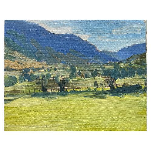 "Newlands Valley. 8x10"""