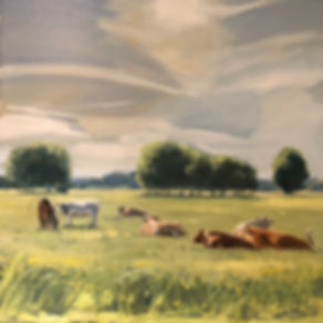 Pastrol, Oil Painting, Cows Sitting down, Dominic Parczuk