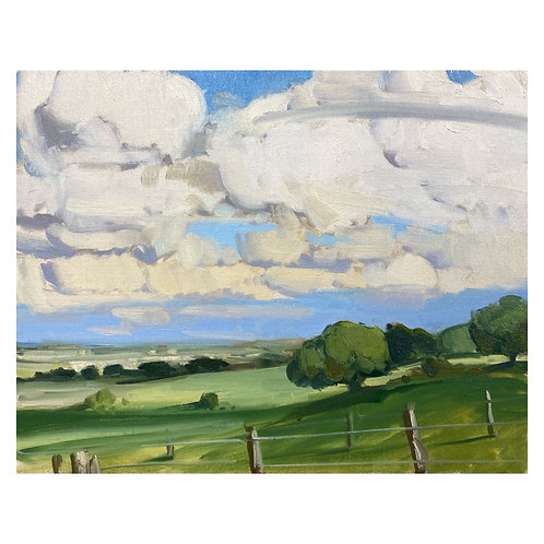 """Summer Wolds. 16x20"""""""