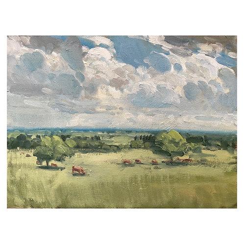"Lincolnshire Pastoral. 12x16"""