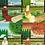 Thumbnail: Four Seasons