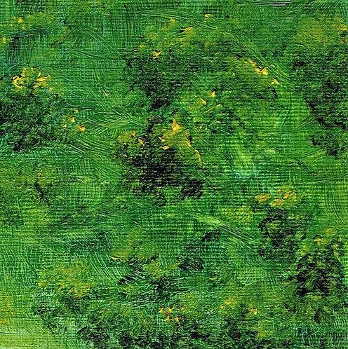 Forest Flora