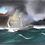 Thumbnail: HMS Pickle