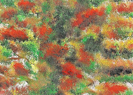 Season Flora