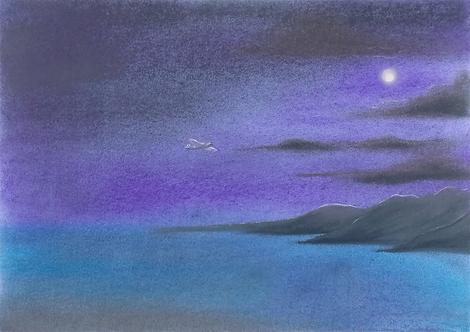 Midnight Sortie