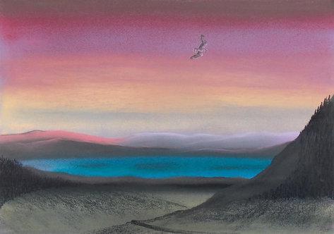 Red Kite surveying territory