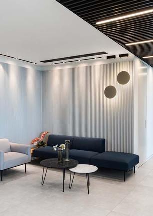 Interior Design Tel Aviv Law Office