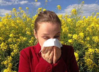 טיפול באלרגיה לפי הרפואה הסינית