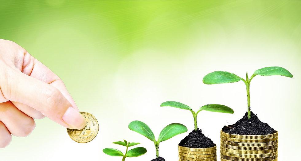 ליווי ותכנון פיננסי