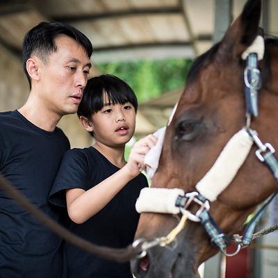 20191207_Horse__EK15650.jpg