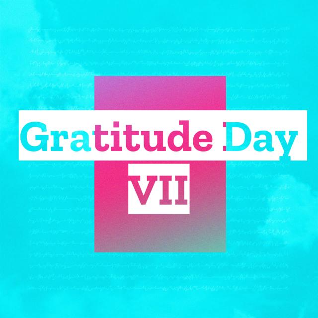 Gratitude Day VII