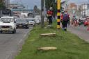Boletin Notired 15Abr21 - La Tala De árboles En La Avenida 68 Para Dar Paso A La Troncal De TM