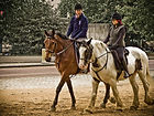 There are activities for youth interested in horses and horsemanship.