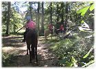 Riders on their horses enjoying the trails