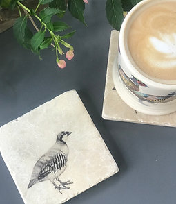 Partridge Coasters