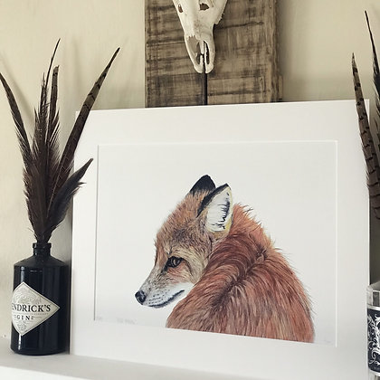 Red Rascal Limited Edition Print