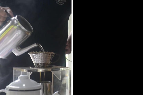 VISITA GUIADA NO CAFEZAL -BUENO BRANDÃO - SUL DE MG