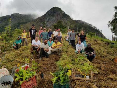 Curso de Agricultura Sintrópica com foco em Café no Sítio Recanto dos Tucanos na Serra do Caparaó MG