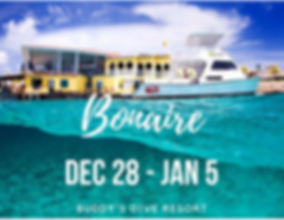 bonaire for bvi email.png