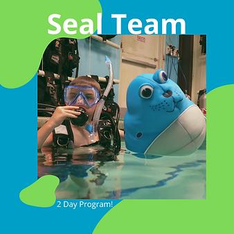 Seal Team.png