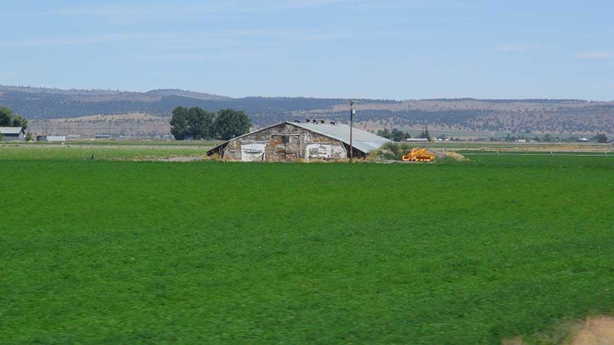 Tule-Lake-Pilgrimage-2014-083