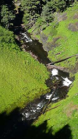 Tule-Lake-Pilgrimage-2014-153