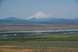 Mt_Shasta_Landscape