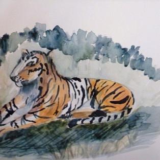 Le tigre de Christiane B.