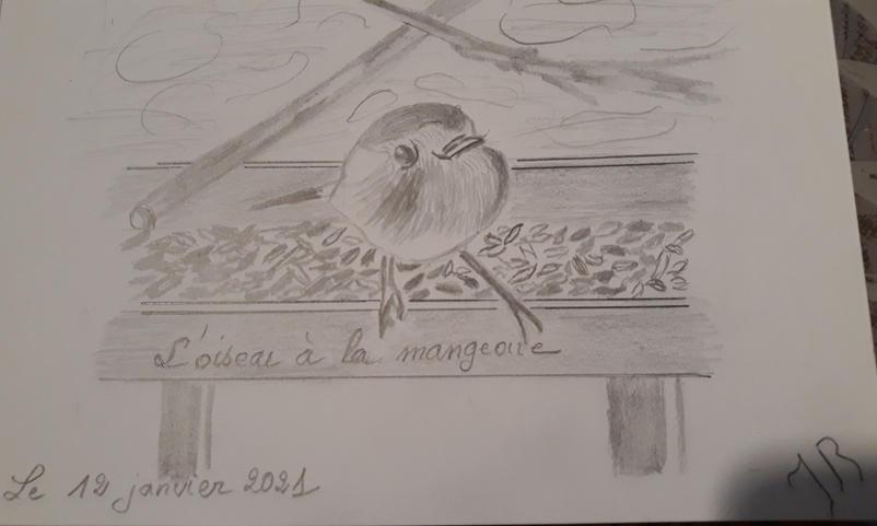 """""""Oiseau à la mangeoire"""""""