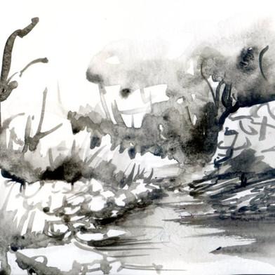 Daniel Delaunay