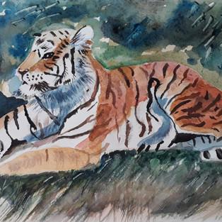 Le tigre de Joëlle B.