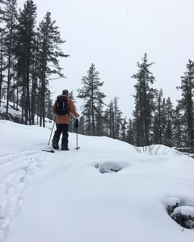 We got snow last night and needed to check it out with a little adventuring..