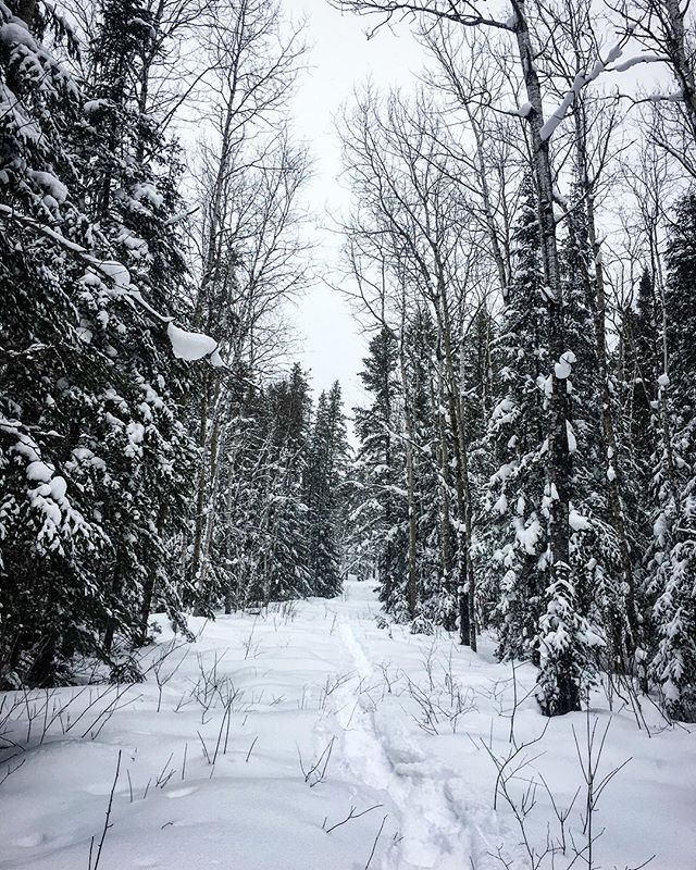 The backyard here is pretty pretty hey_ #kamiskotia #snowshoeingadventure #explore #fun #enjoy #onta