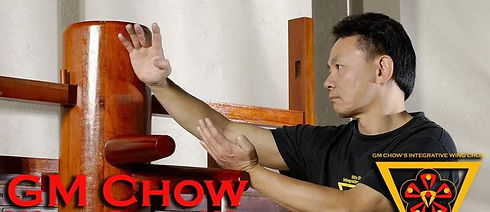 Sifu Chow and Wooden Dummy Compressed.jp