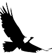 BRH Eagle Black white stroke.png