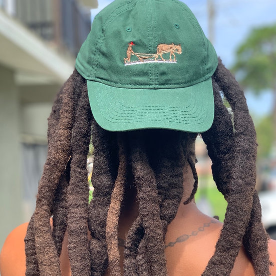 40 AMC Hat