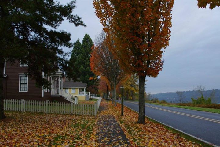 So sad I missed the Port Gamble Ghost Conference this year, It is so beautiful in the fall!