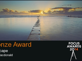 Focus Awards - Where to from here?