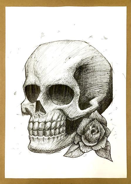 Skull with rose - Ballpoint pen.jpeg