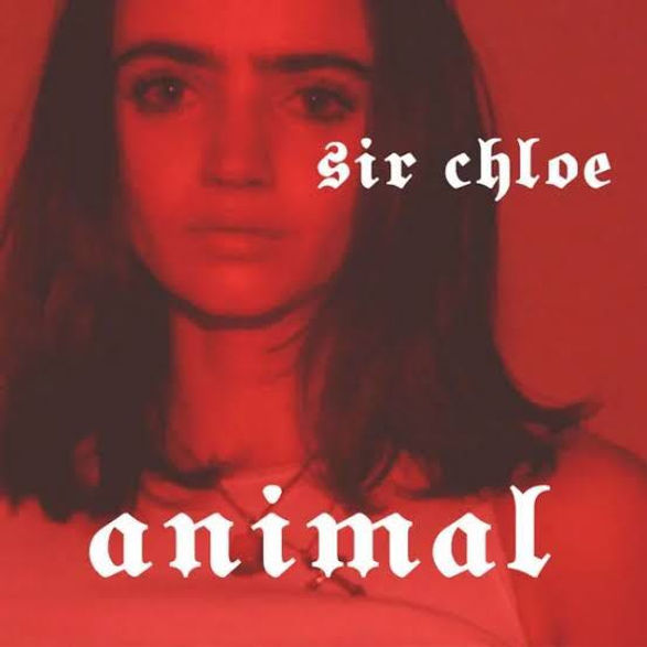 Original - Sir Chloe - Animal.jpg