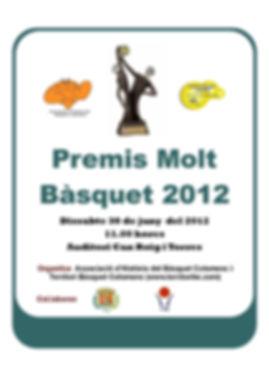 cartellmoltbasquet2012.JPG